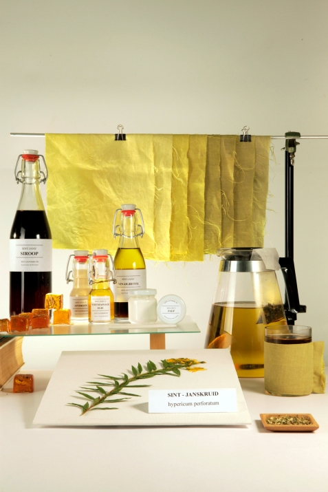 Katja Gruijters Saint John's wort Lab, 2014, photography Jonas de Witte Courtesy of Marres