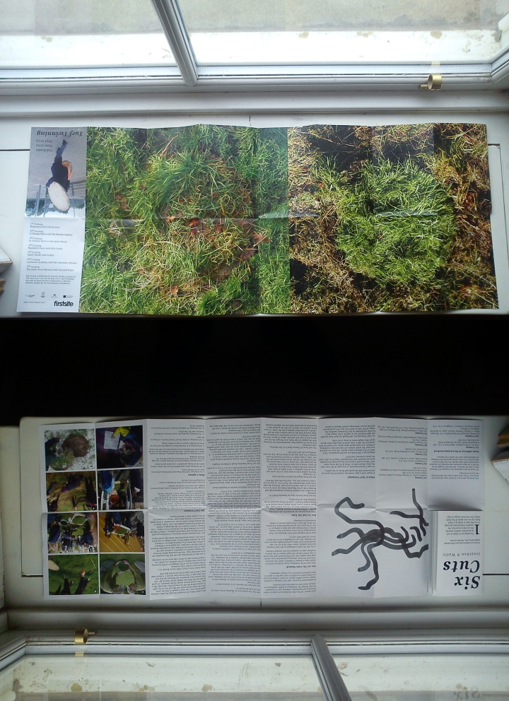 Townley and Bradby's publication for the Turf Twinning Project (2012-2013)